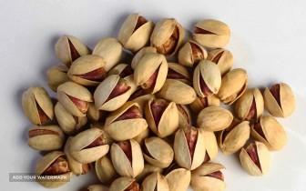 Export Jumbo Pistachio (Kalleh Ghouchi)