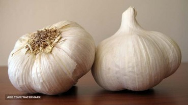 dry Garlic exporter from Iran