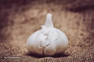 Exporting dry Garlic From Iran