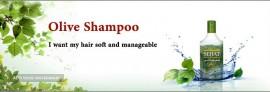 Sehat Olive Shampoo
