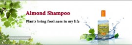 Sehat Almond Shampoo For Export
