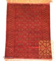 Turkman rug Saloor For Export