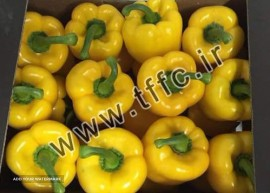 Exports Capsaicin to Russia