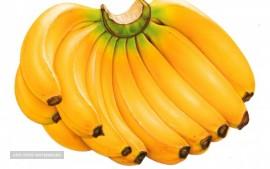 AGRO Fresh Banana Specifications