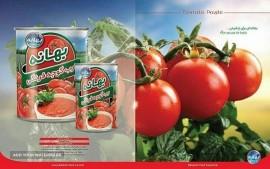 صادرات رب گوجه فرنگی