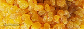 Export Iranian Golden raisins