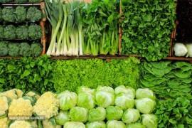 صادرات سبزی به عراق