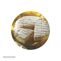 صادرات لبنیات پنیر کممبر