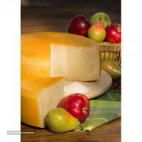 صادرات پنیر رومانو به بحرین