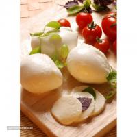 صادرات لبنیات پنیر تازه موزارلا به کویت