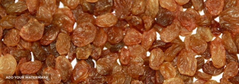 iranian MALAYER RAISINS exporting